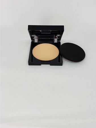 Picture of C35 Dry2Wet  Powder Foundation